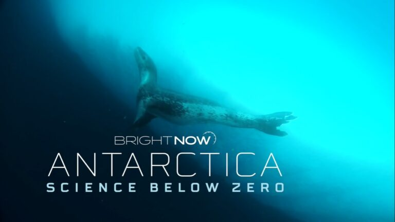 Chilean Documentary Explores the Effects of Climate Change in Antarctica's Sea Currents
