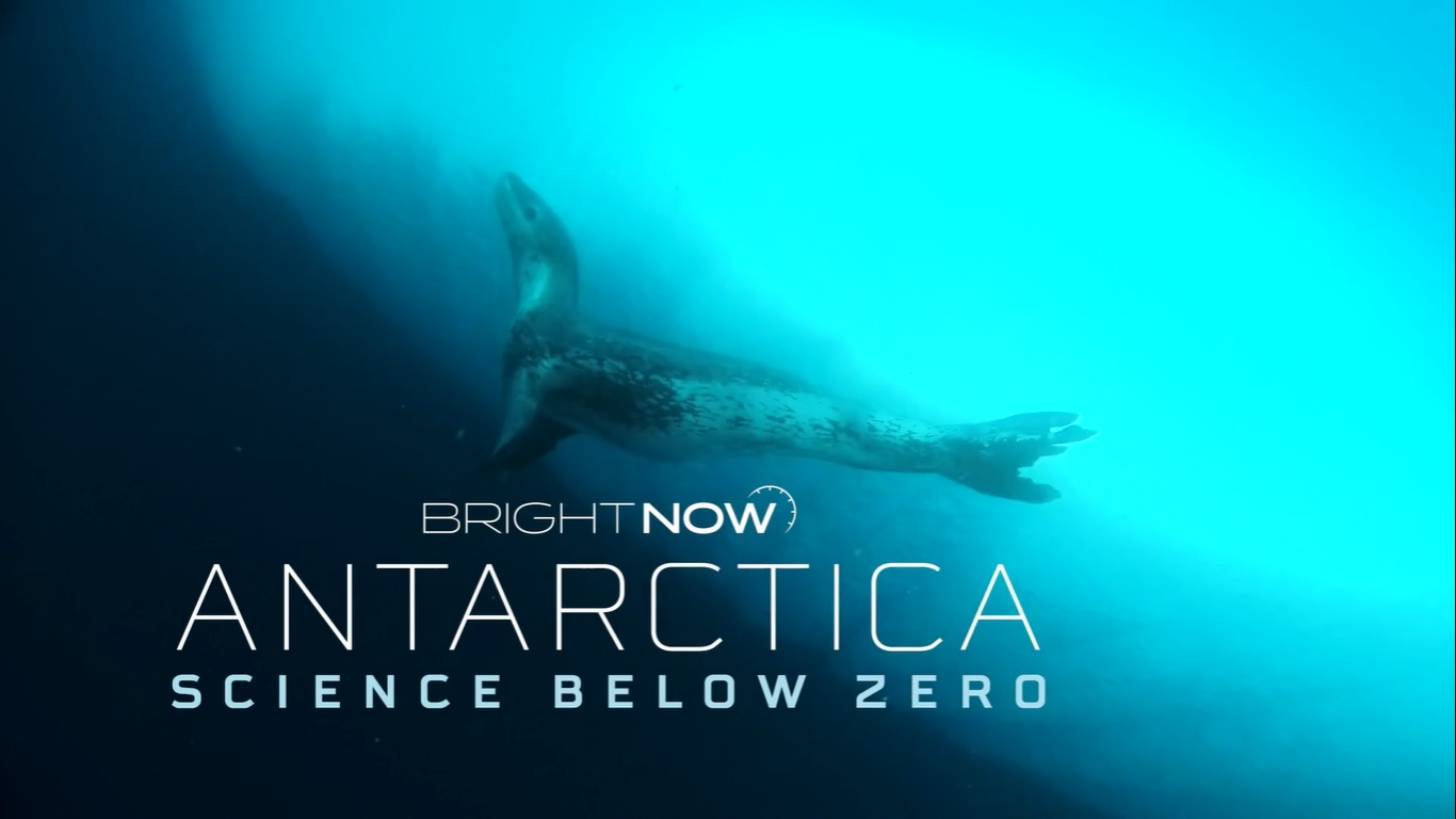 Documental chileno explora los efectos del cambio climático en las corrientes marinas de la Antártica