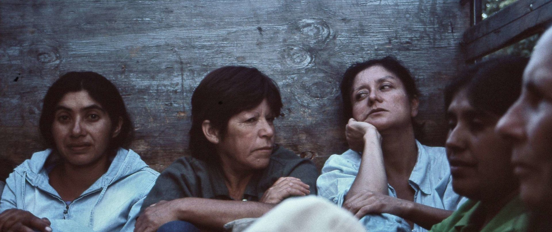 Films that premiered at the Berlinale give life to fifth edition of Thursdays of Chilean Cinema